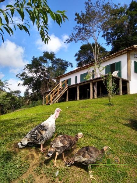 Fazenda / Sítio à venda em Vale das Videiras, Petrópolis - RJ - Foto 42