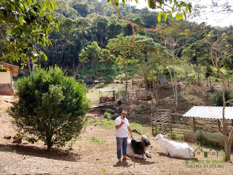 Fazenda / Sítio à venda em Vale das Videiras, Petrópolis - RJ - Foto 23