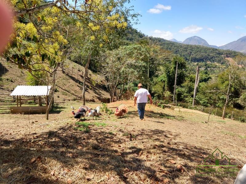 Fazenda / Sítio à venda em Vale das Videiras, Petrópolis - RJ - Foto 24