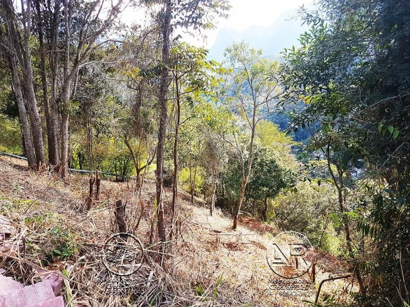 Terreno Residencial à venda em Araras, Petrópolis - Foto 7