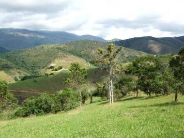 [CI 447] Terreno Residencial em Vale das Videiras - Petrópolis/RJ