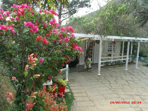Casa à venda em Cuiabá, Petrópolis - Foto 9