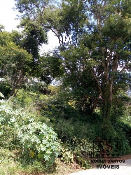 Terreno Residencial à venda em Nogueira, Petrópolis - Foto 11