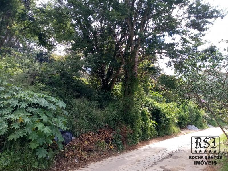 Terreno Residencial à venda em Nogueira, Petrópolis - Foto 12