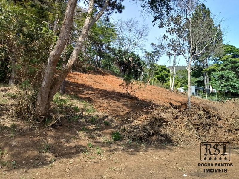 Terreno Residencial à venda em Nogueira, Petrópolis - Foto 7