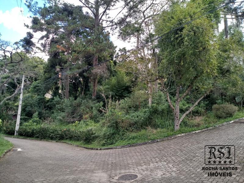 Terreno Residencial à venda em Carangola, Petrópolis - Foto 1
