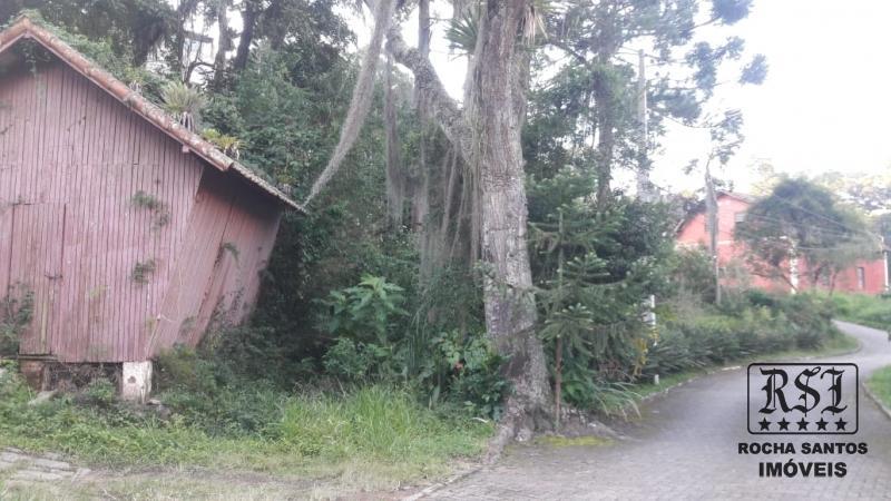 Terreno Residencial à venda em Carangola, Petrópolis - Foto 4