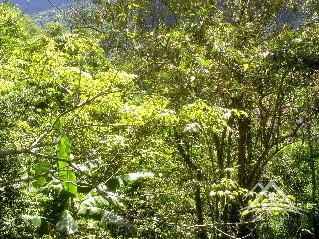 Fazenda / Sítio em Rio de Janeiro, Santo Aleixo [Cod 89] - Santo Aleixo Imóveis