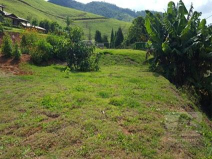 Foto - [2914] Terreno Residencial Petrópolis, Secretário