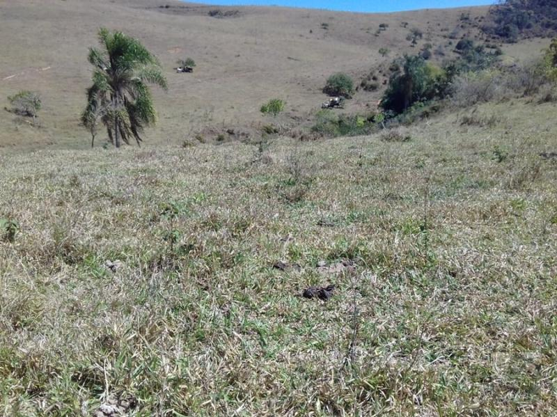 Fazenda / Sítio à venda em Secretário, Petrópolis - RJ - Foto 5