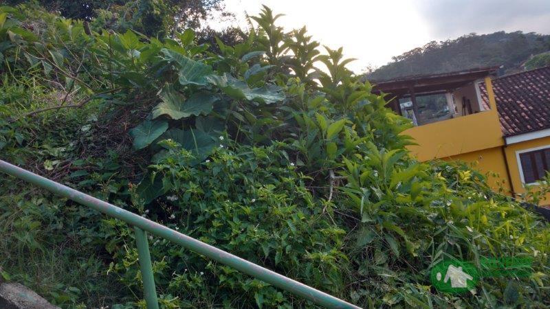 Terreno Residencial à venda em Bingen, Petrópolis - RJ - Foto 6
