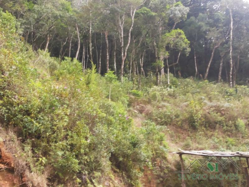 Lote/Terreno em Bingen  -  Petrópolis - RJ