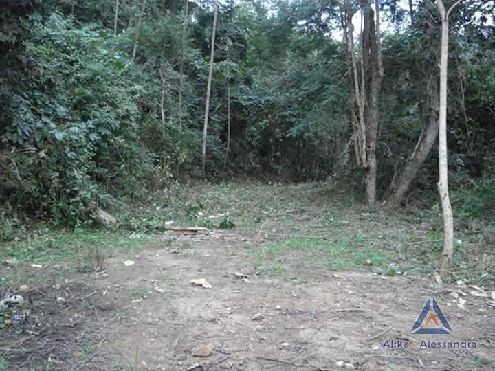 Terreno Residencial à venda em Posse, Petrópolis - Foto 3