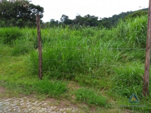 [CI 10] Terreno Residencial em Corrêas, Petrópolis