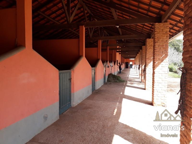 Fazenda / Sítio à venda em Posse, Petrópolis - Foto 16
