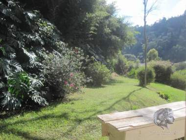 [CI 5259] Lote/Terreno Residencial em Itaipava, Petrópolis/RJ