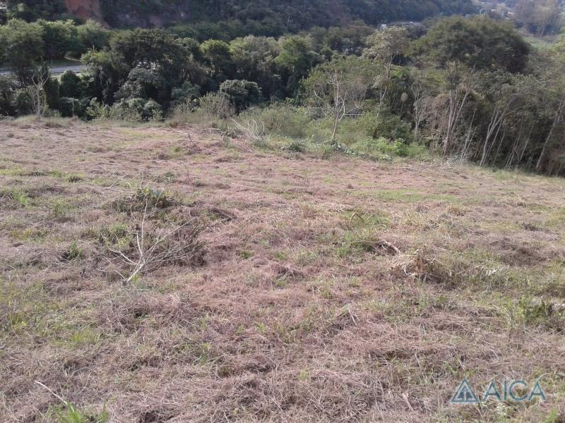 Terreno Comercial à venda em Itaipava, Petrópolis - RJ - Foto 5