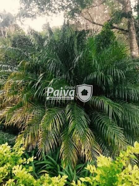 Terreno Residencial à venda em Parque do Imbuí, Teresópolis - RJ - Foto 8