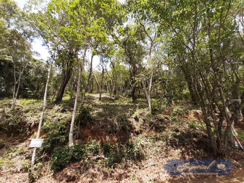 Terreno Residencial à venda em Samambaia, Petrópolis - RJ - Foto 12