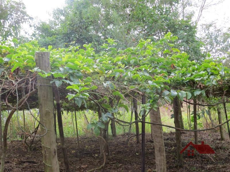 Fazenda / Sítio à venda em Secretário, Petrópolis - RJ - Foto 36