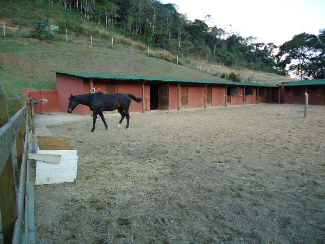 Fazenda / Sítio à venda em Araras, Petrópolis - RJ - Foto 6