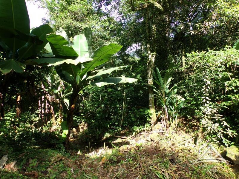 Fazenda / Sítio à venda em Centro, Rio de Janeiro - RJ - Foto 41